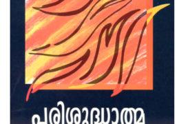 പരിശുദ്ധാത്മാ സ്നാനം
